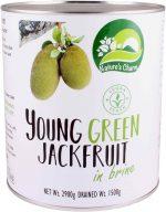Nature's Charm jonge groene jackfruit in brine 2900 gram